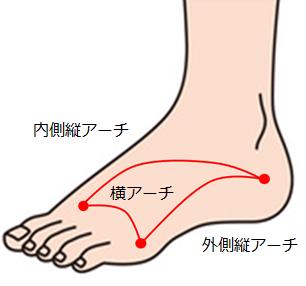 5つの足のアーチ機能とは?