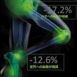 ビオンテックは足と靴にフィットできる唯一のインソール